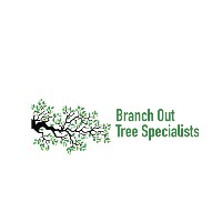 Branch Out Tree Specialist