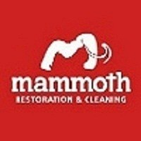 Mammoth Restoration & Cleaning