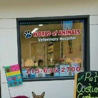 World Of Animals, Inc. at Elkins Park